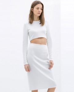 Zara Pencil Skirt and White Top