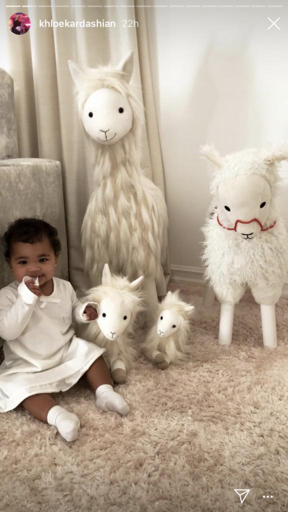 Khloe Kardashian's Plush Llama Family On Instagram
