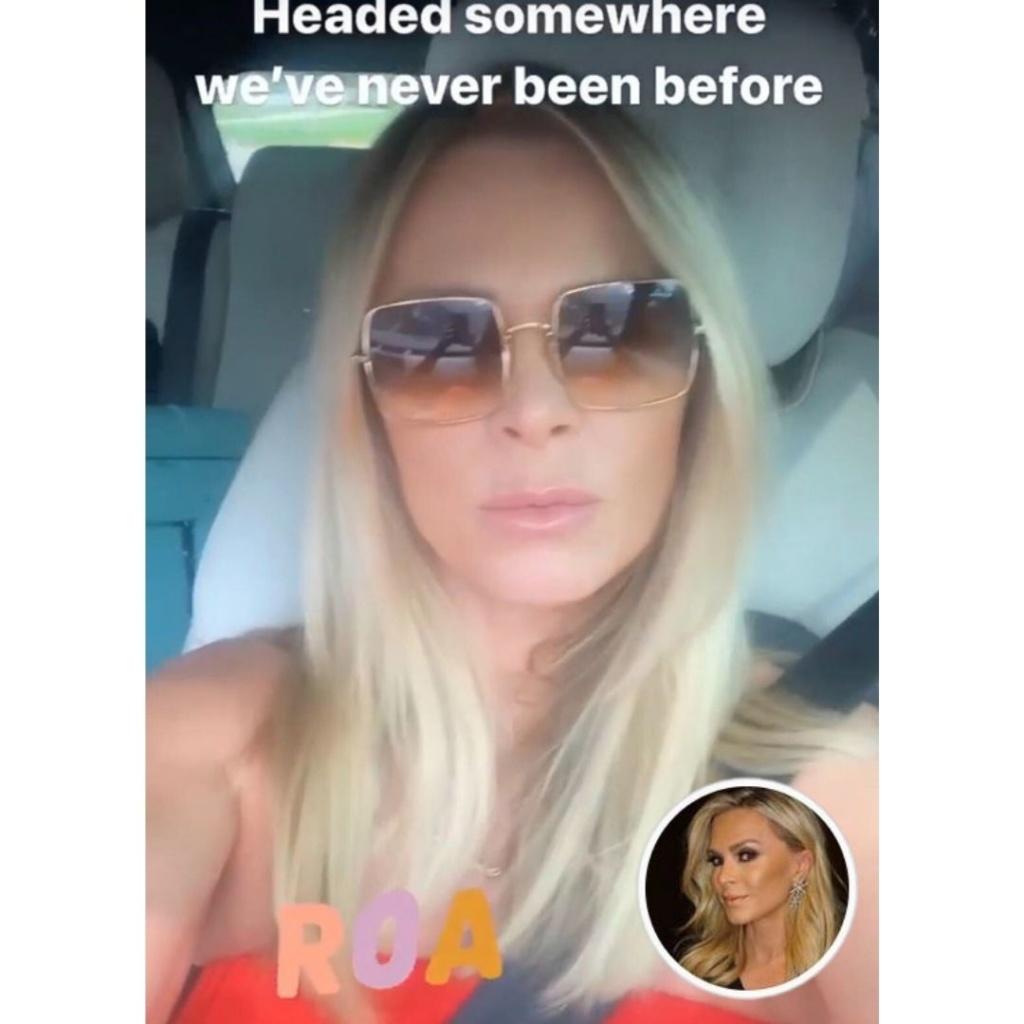 Tamra Judge's Brown Sqaure Sunglasses